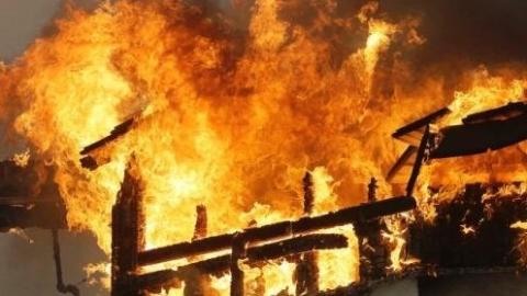"""美国""""葡萄酒之乡""""遭山火重创 加州成重大灾区"""
