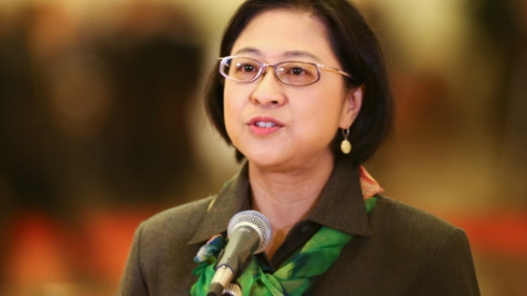 党代会特写 │ 十九大台湾省籍代表、复旦教授卢丽安:我以生为中国人为傲