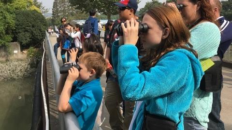观鸟听虫赏秋叶 45组中外家庭寻找上海野趣