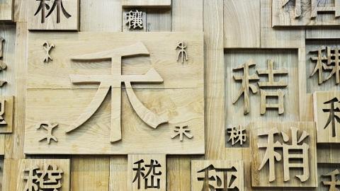 宁波话竟有七个声调?专家讨论汉语国际化