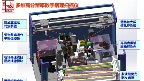上海交大研发高端数字病理扫描仪打破关键技术国际垄断