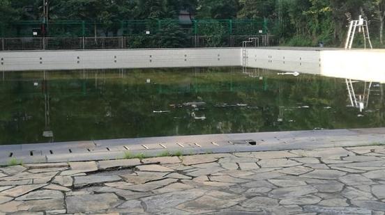 中远两湾城健身会所泳池闲置无人管  水质发黄蚊虫聚集