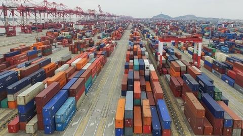 【领航新征程】新时代 新气象 | 上海港集装箱一昼夜吞吐量破13万箱创新高