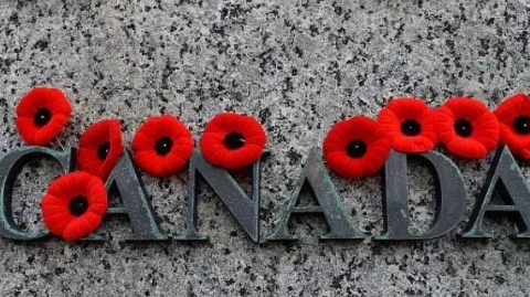 """加拿大""""国殇日"""":衣襟上的红罂粟"""