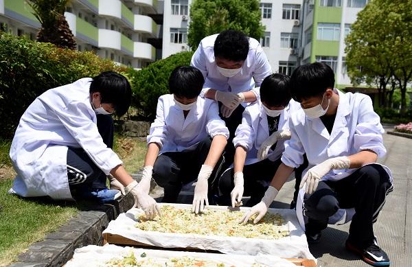 学生们在研究肥料制作.jpg
