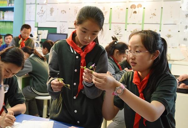 """虹桥中学学生在上自然笔记课程""""校园中的野生植物.jpg"""