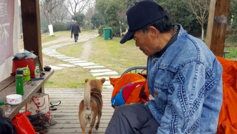 独居老人养条狗 早逝风险降三成