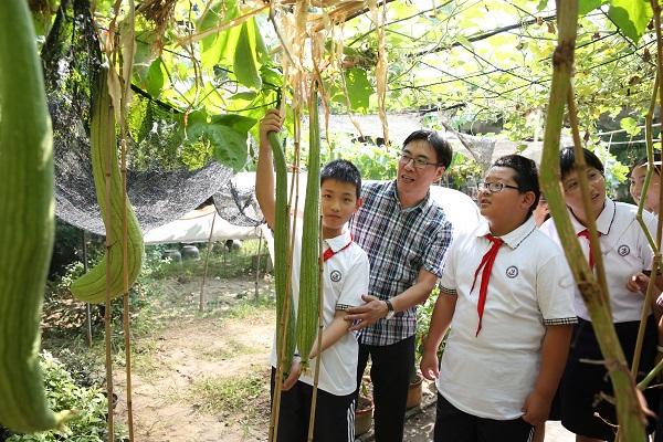 同学们种出了太空育种的丝瓜.JPG