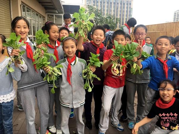 """8古猗小学的学生们分享""""生态猗园""""的劳动成果(学校供图).jpg"""