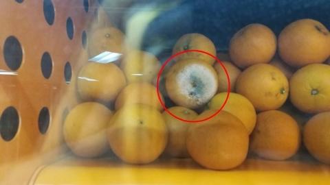 """号称""""百分百无添加""""自动售卖橙汁机 竟榨出""""黑胡椒""""橙汁?"""