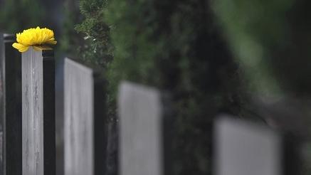 方便市民冬至扫墓 上海开通19条冬至扫墓定点班车