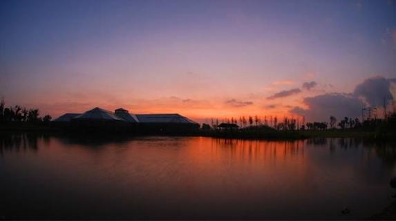 【领航新征程】有酒有故事 上海也有最美的乡村风光