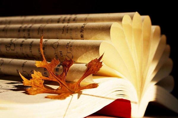 夜读|周国平:剩下的才是教育