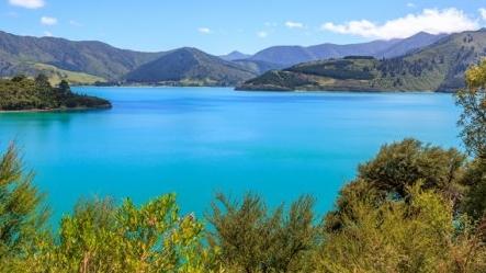 天下游 | 新西兰1号公路通车 用九天时间开启一段发现之旅