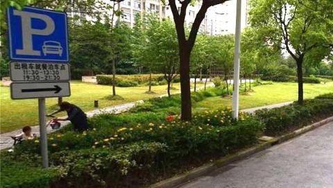 解决出租车驾驶员就餐、临时上下客等停车需求 上海市设置42处出租车就餐点