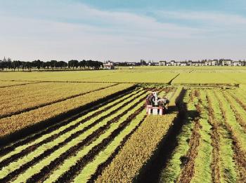今日焦点丨1%体量小农业做出五彩大文章