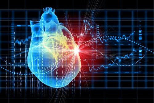 优化冠脉介入治疗培训项目在沪启动 精准医疗技术辐射全国