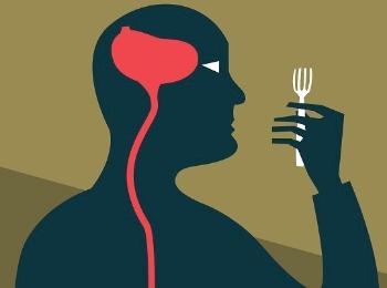 """减不下来的肥胖,也许你需要""""治""""脑"""
