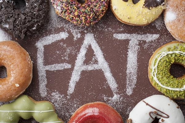 健康的身体需要适量的脂肪