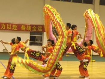 【文体社会】晋级全运会舞龙项目决赛 三林舞动海派龙
