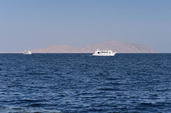 埃及政府将向沙特阿拉伯归还蒂朗,塞纳菲尔两岛主权.