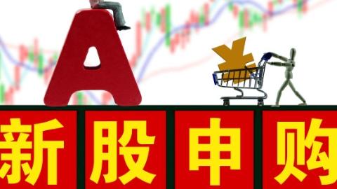 3新股2涨停 新股分化是一个什么信号?