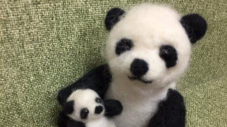 真爱!日本人给一只熊猫宝宝起了32万个名字!