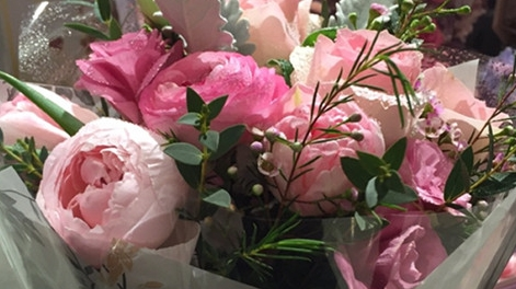 陕西北路上的夏日玫瑰