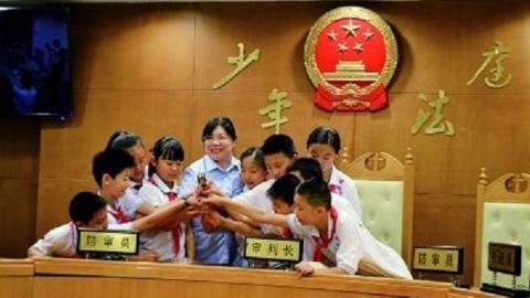 上海法学专家呼吁设立少年法院