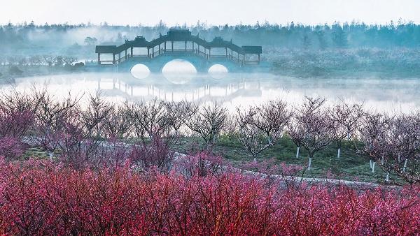 开幕式将在上海世博展览馆举行,花车巡游将在今年上海旅游节的花车