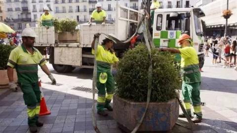 预防恐怖袭击,欧洲巨型花盆销量暴涨500%