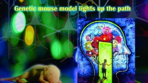 """科创新地标   解人脑之谜 攀全球""""制高点"""""""