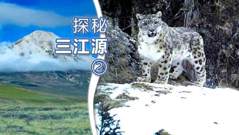 探秘三江源②丨澜沧江园区:我想和雪豹有个约会