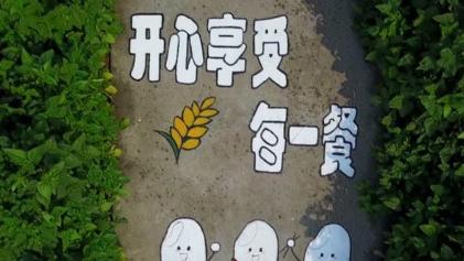 """风吹麦浪见""""农夫锄禾"""" 涂鸦小路现大团田间"""