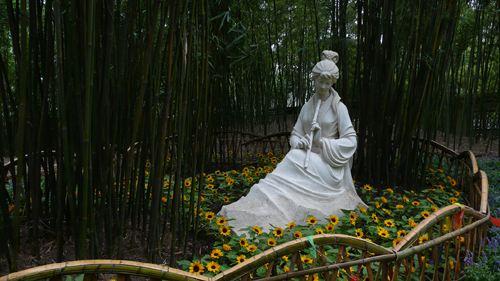 古猗园的竹