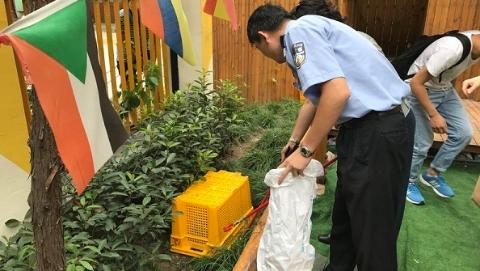 有问题找警察蜀黍!幼儿园有蛇出没  民警将其抓获放生
