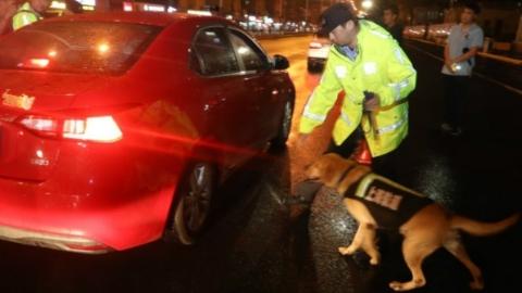 上海警方一个通宵破案290多起!360余名违法犯罪嫌疑人落网