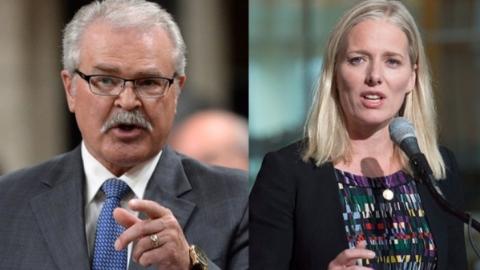"""用玩偶比喻女同僚 加拿大""""大嘴""""议员道歉"""