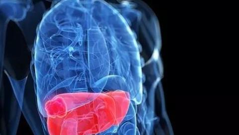 """原发性肝癌治疗之""""王道"""":调整机体内环境,控制肿瘤复发转移"""