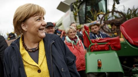 德国今日大选 默克尔胜券在握