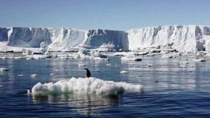南极海冰面积创新低纪录
