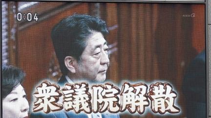 论坛|安倍解散众议院:谋略还是豪赌?