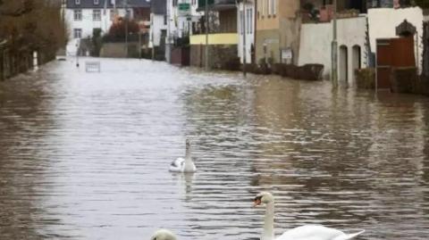 飓风加暴雨,德国科隆水位线暴涨告急