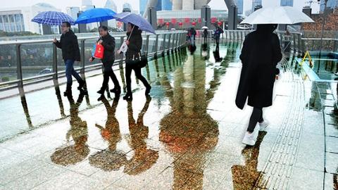 丹丹看天气|冷冷冷!上海今夜雨水再度光临 下周会下雪吗?
