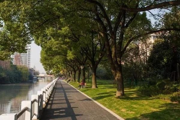 图说:横沥港绿道 来源:上海闵行.jpg