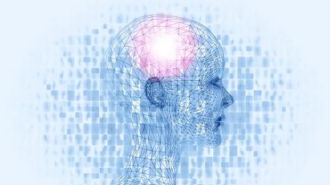 全球超1亿人受困智力障碍  交大团队发现遗传秘密为治疗提供新思路