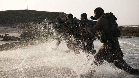 以色列突击队血洗埃及绿岛