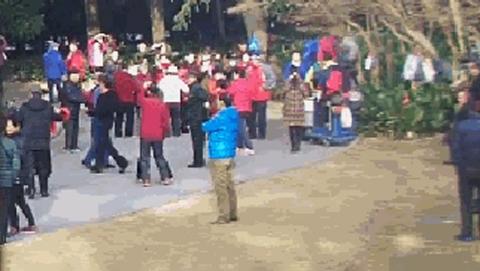 龙华烈士陵园内跳舞健身遭投诉:能还先烈一片宁静安息地吗?