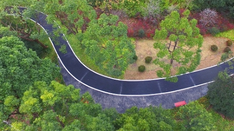 """杨浦新江湾城区域绿道已超10公里 """"城市生态绿廊""""渐形成"""