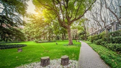 又增绿地,上海市今年计划新增50座城市公园